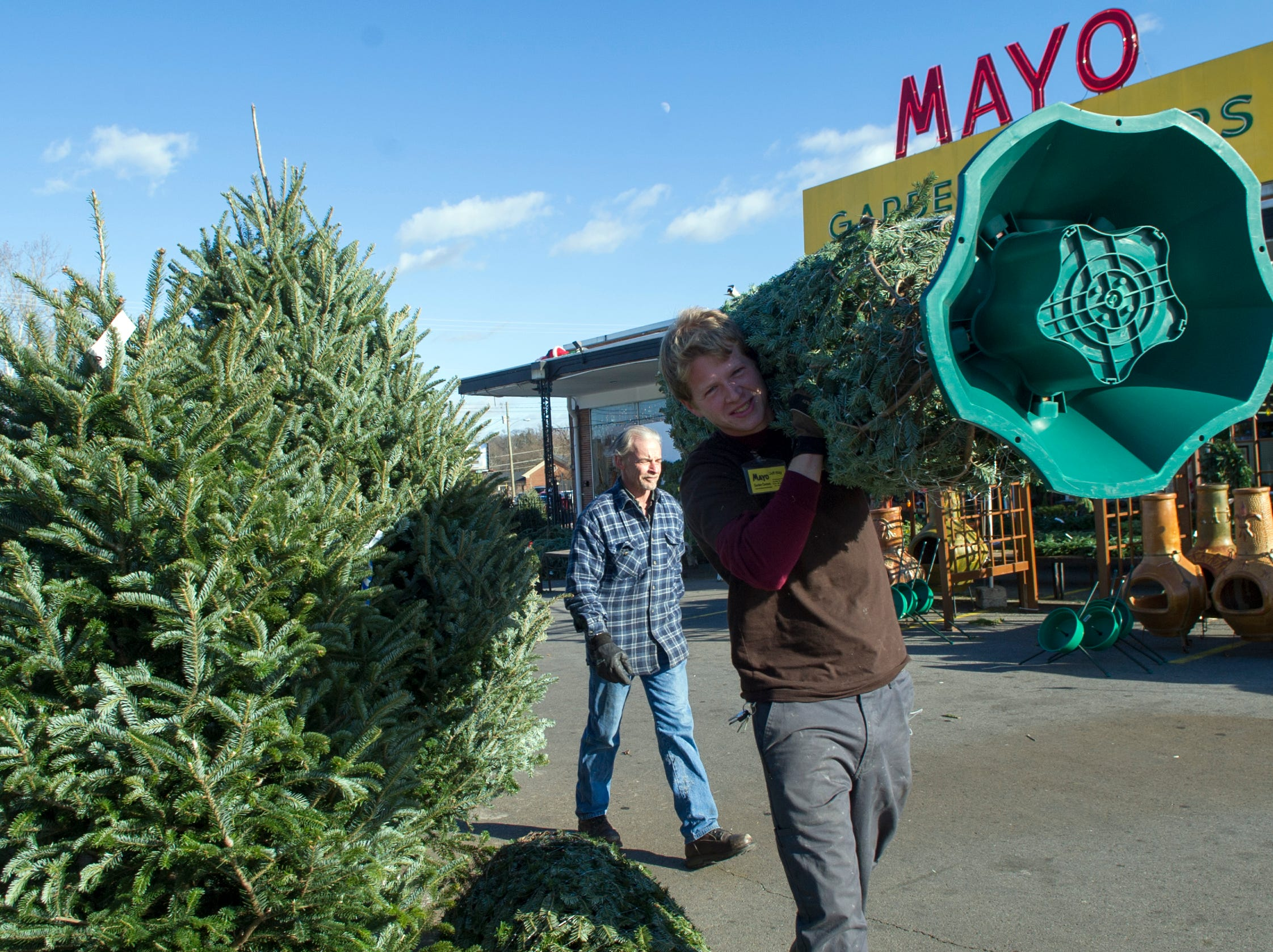 Mayo Garden Center employees Jeff Rizy, right, and Tom Blake, left, help deliver a Christmas tree to a customer's car at the store Friday, Dec. 21, 2012.