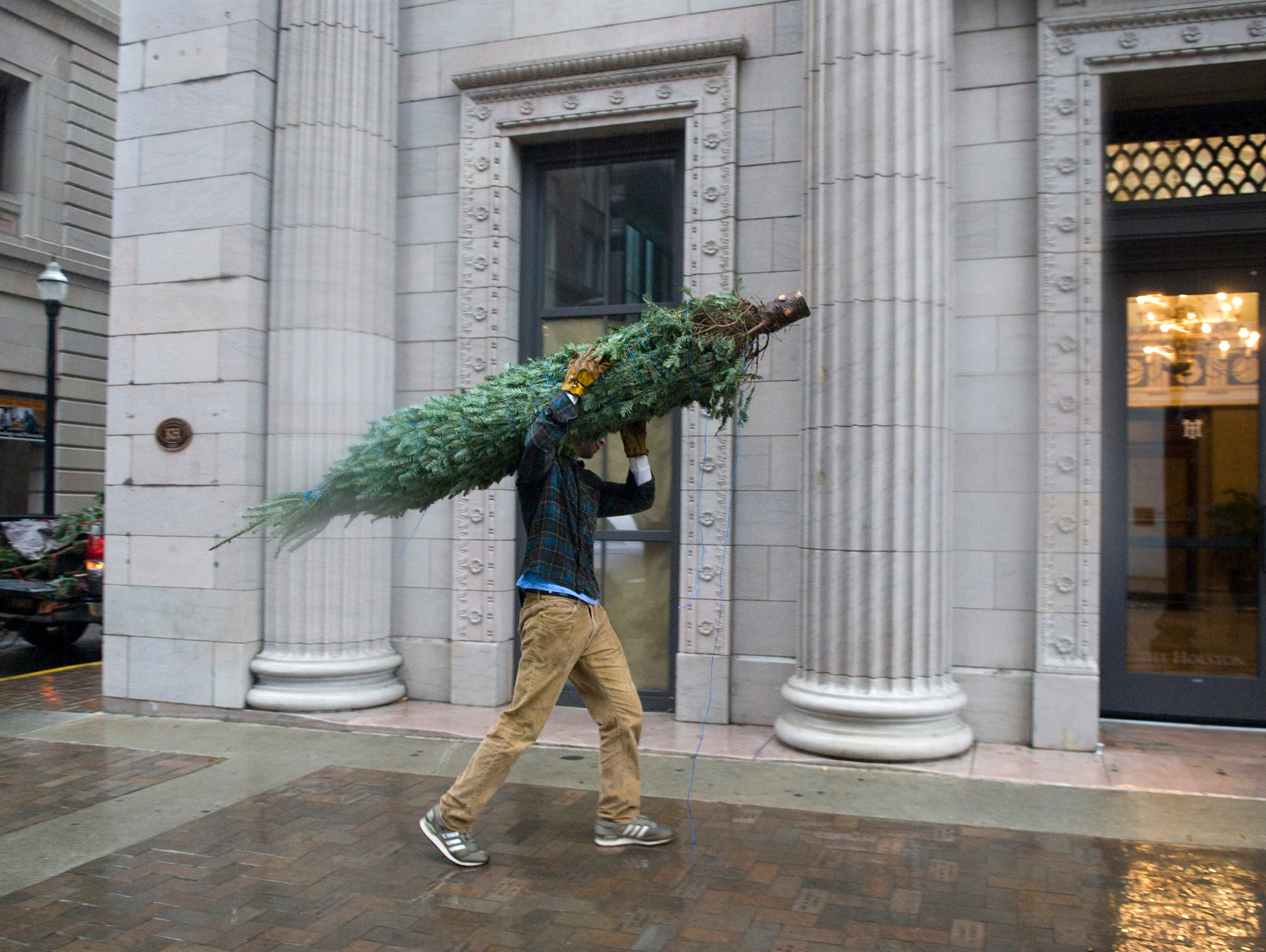 Raisethetree.com co-founder James Trimble delivers a Fraser fir to a customer Tuesday, Nov. 30, 2010 on Gay Street. Trimble and fellow  University of Tennessee graduate Paul Dickenson founded the new start up company that delivers Christmas trees that are ordered online. Trimble says the company gives 25 percent of profits to a community organization of the customer's choice. Rock n' roll fans will recognize Trimble as the lead singer of the band Dirty Guv'nahs.