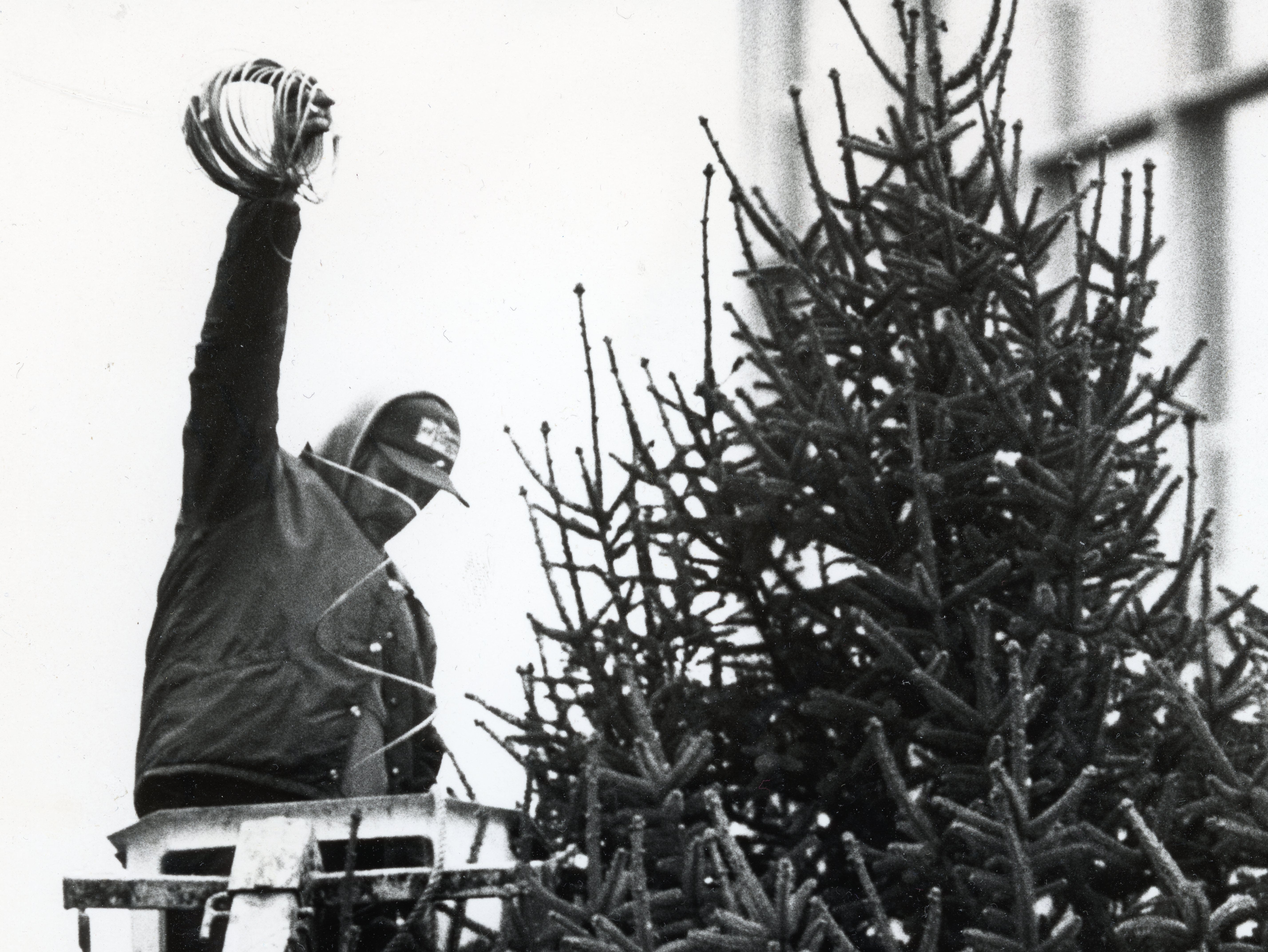 "City Service Department employee Mike Armstrong begins decorating a 30-foot spruce tree delivered Monday to Krutch Park in November 1988. The tree was donated by Harry and Martee Anderson. The lights on the tree will be turned on during a ""Krutch Park Christmas in the City"" celebration on Friday."