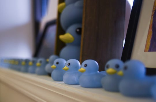 Blue rubber ducks in a window at Eggleston Gallery and Studios in Bath.  The gallery owner   is taking donations from the community to support the fight to keep Robert Park's Blue Loop art installation intact.