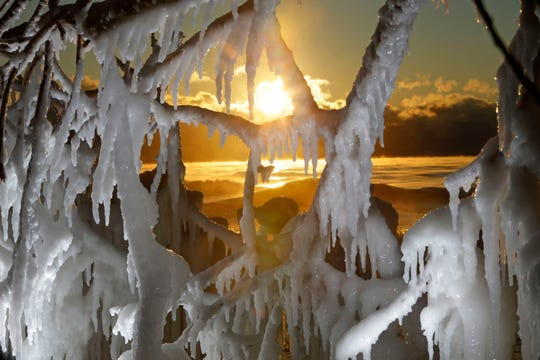 The sun rises over Lake Michigan and frozen tree branches. Ice formations covered branches along the Lake Michigan shoreline north of Bradford Beach as extreme cold have caused water to wash over trees branches and the rocky shore which freezes,  creating sculpture like formations.