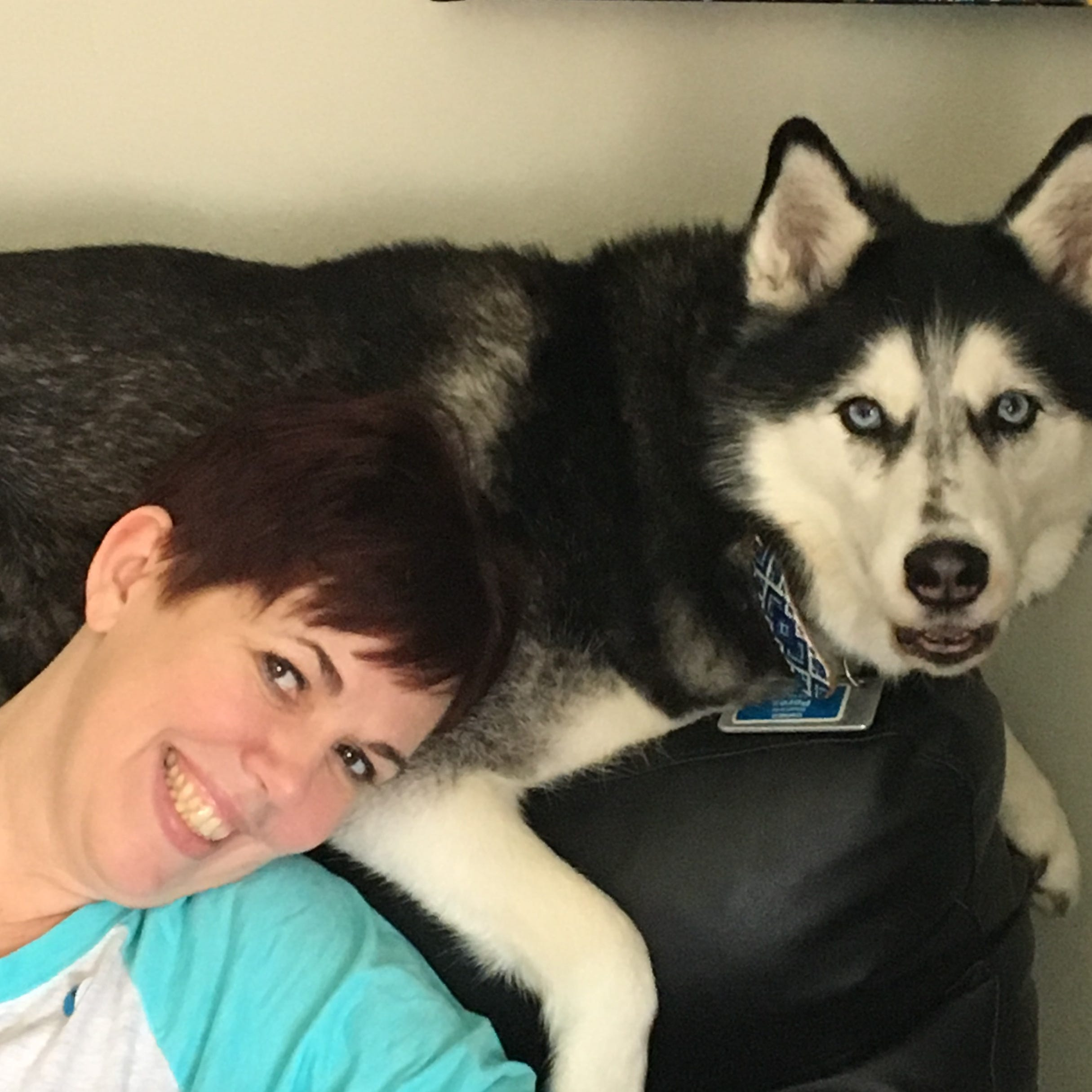Stephanie Herfel relaxes with her Siberian husky, Sierra. The dog's nose detected a scent in Herfel's abdomen that was diagnosed to be ovarian cancer. Sierra acted strangely on two subsequent occasions, and both turned out to be reccurrences of cancer.