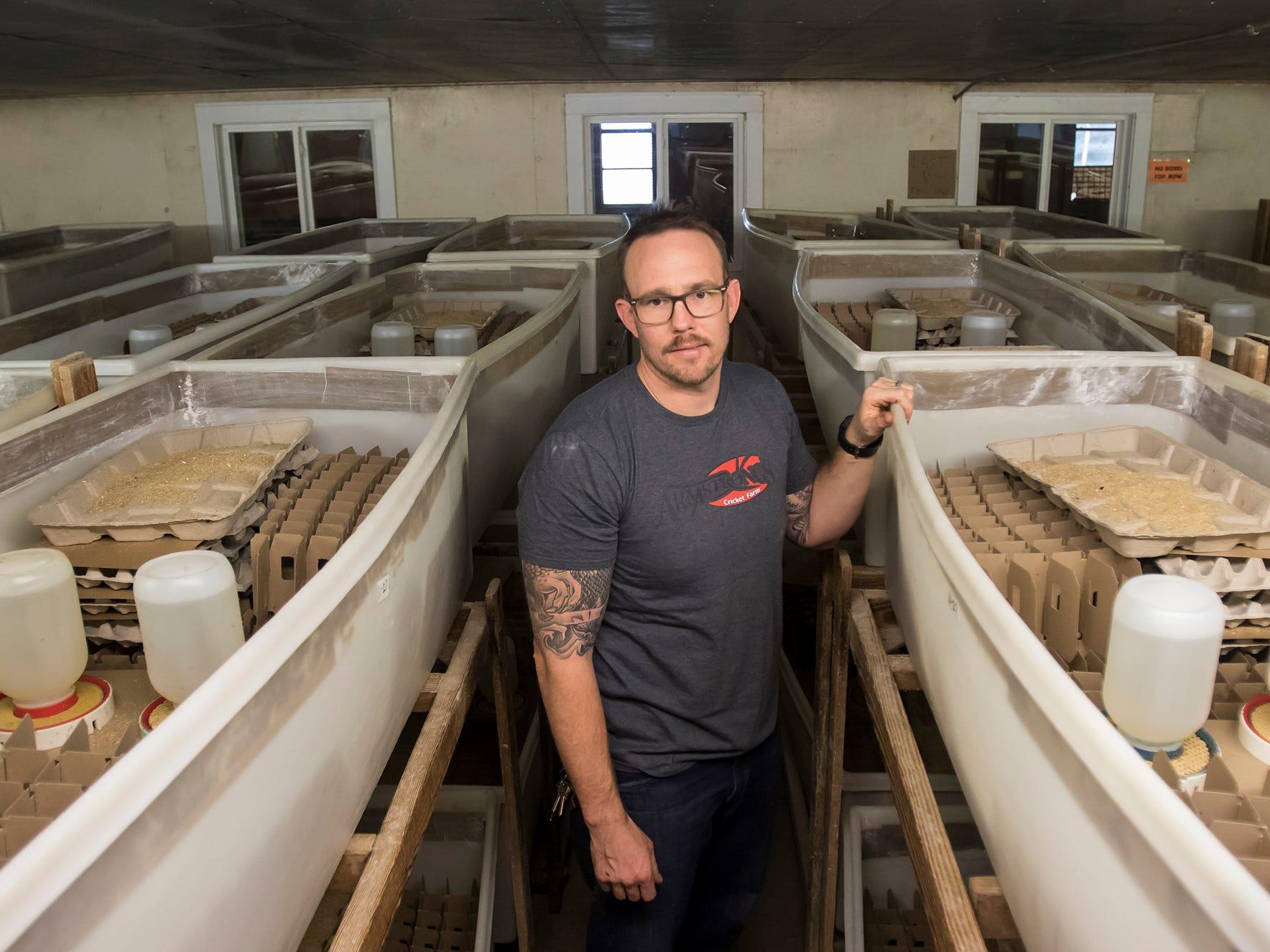 Crunchy: Louisiana farm hopes to expand into edible insect market