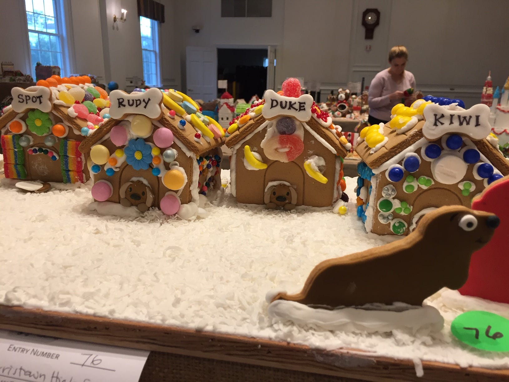 "The ""All In"" Dog Kennel by Morristown High School students at the Frelinghuysen Arboretum's 2018 Gingerbread Wonderland. Special Needs Category."