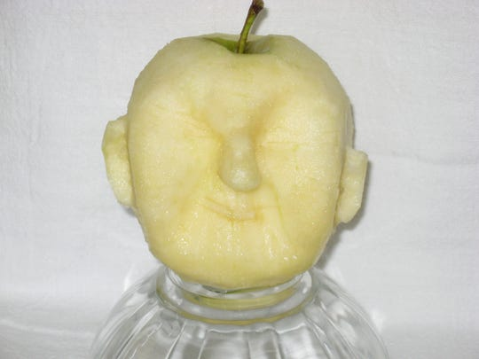 Apple-head doll-making starts with a ripe, peeled apple.