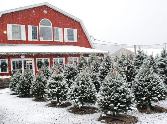 A wreath making workshop will be held on Dec. 7 at Alstede Farms in Chester.