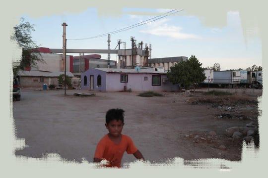 Un niño pasea en su bicicleta frente a la fábrica Fevisa en el ejido El Choropo, cerca de Mexicali.