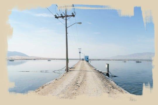 Una parte de las aguas residuales de Mexicali pasan por la Planta de Tratamiento de Aguas Residuales Las Arenitas, al sur de la ciudad.