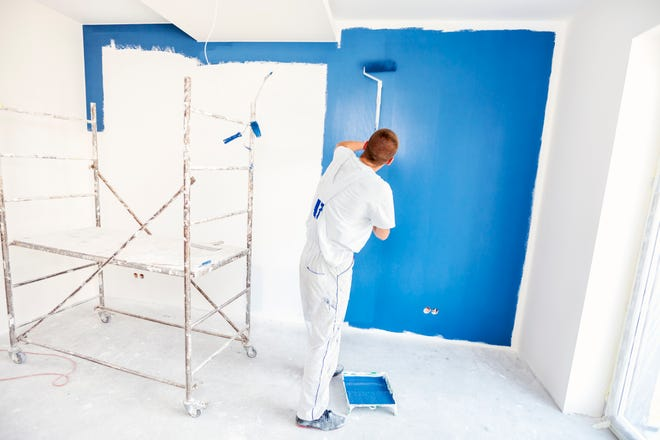 The Art of Professional Painter