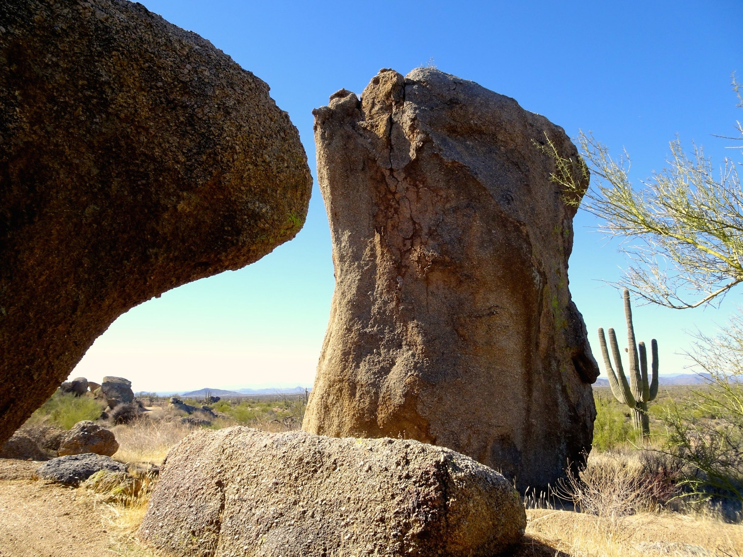 The North and South Diablo trails wind through boulder fields north of Cholla Mountain.