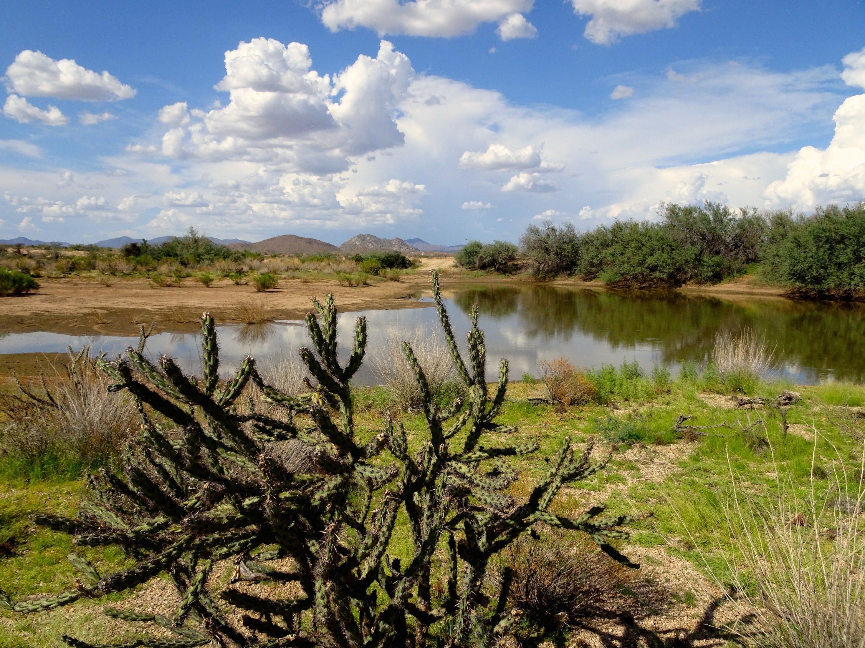 The Gooseneck Trail skirts the edge of a seasonal pond.