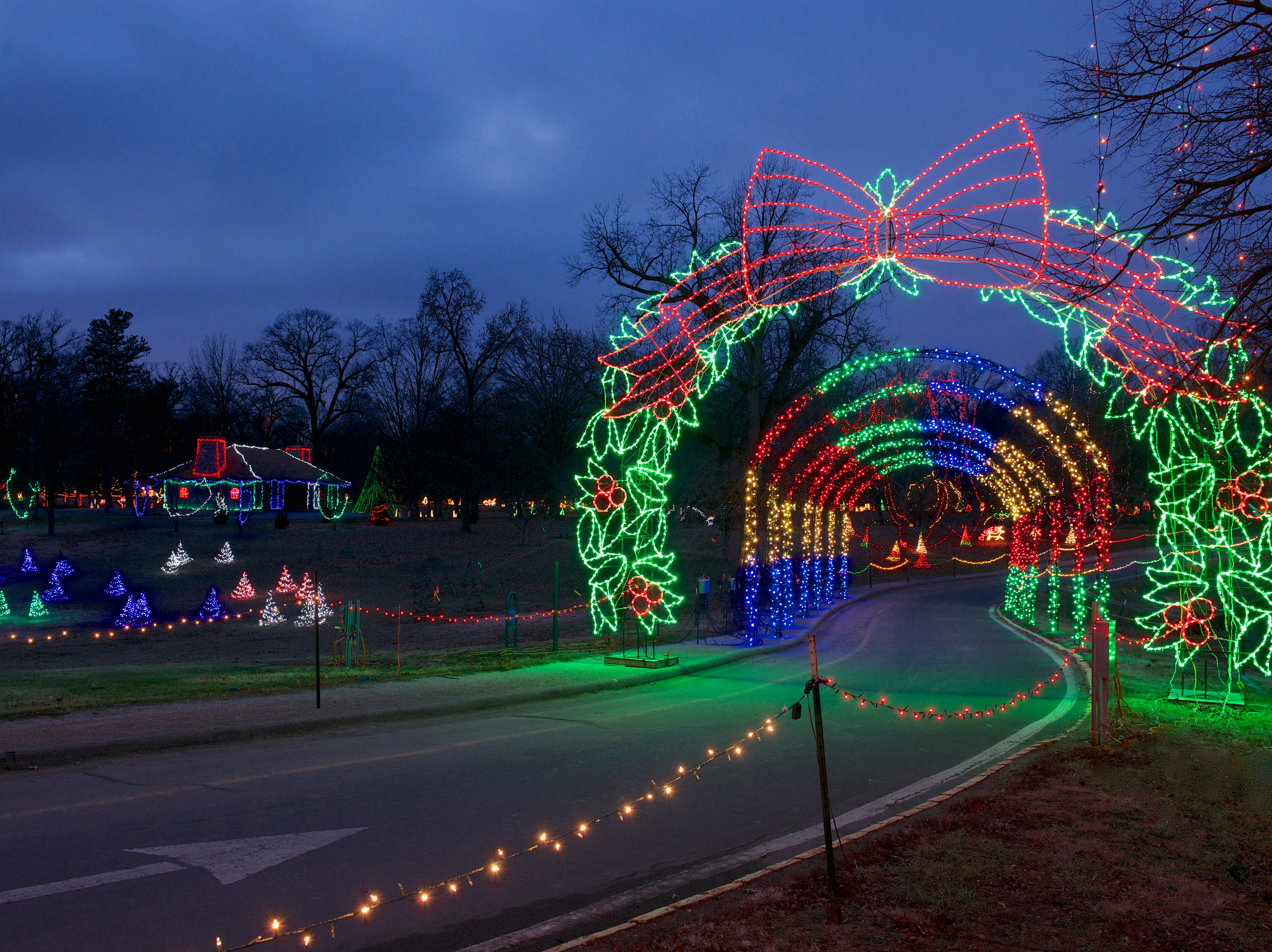 Holiday lights at Tilles Park in St. Louis on December 29, 2013.