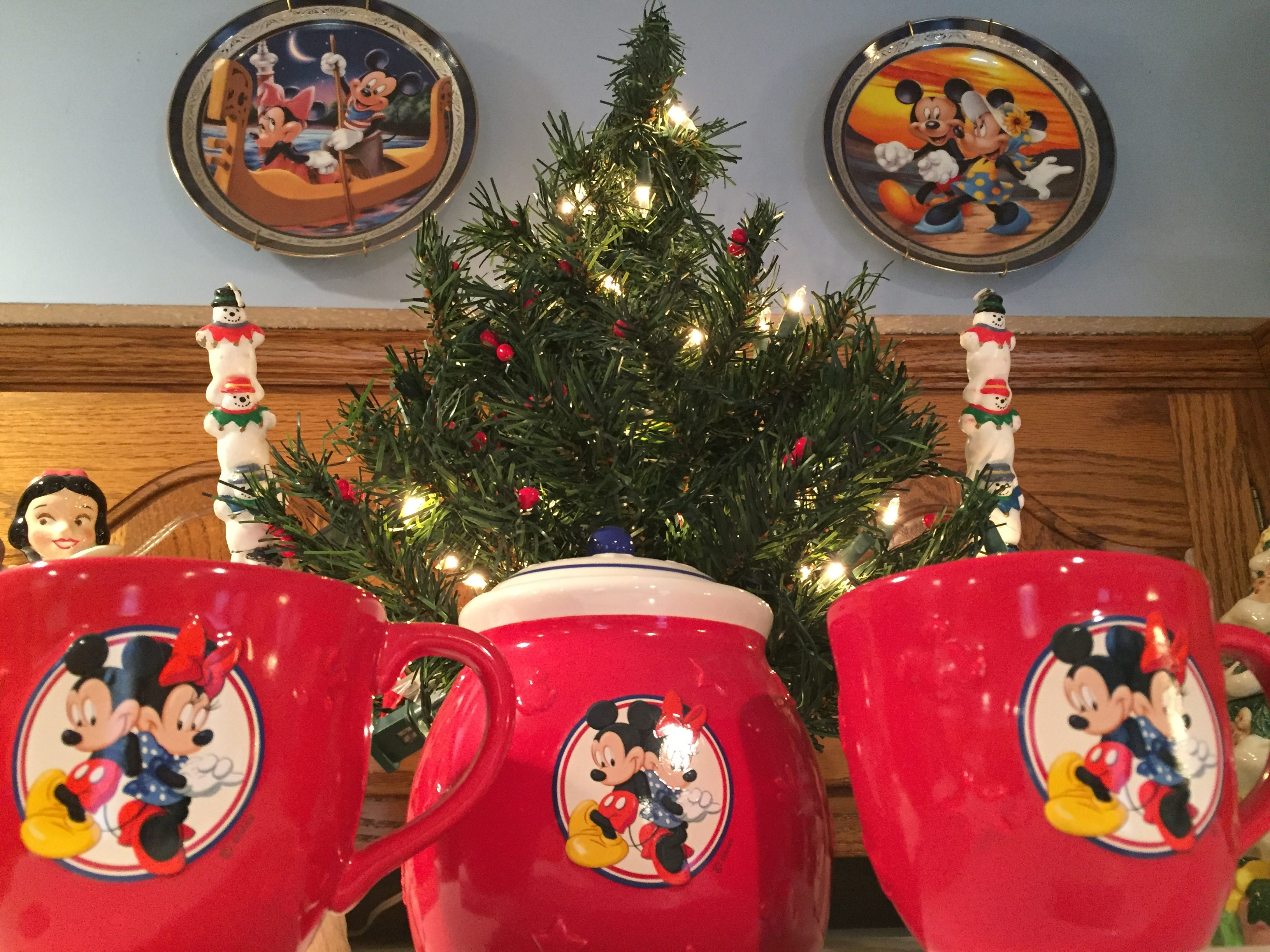 Donna and Paul Miller pull out all the stops on their Disney-themed Christmas each year for their kids', grandkids' and friends' enjoyment.
