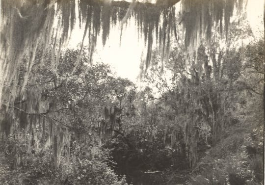 The Sebastian River was a paradise to be tamed when the first developers of what would become Fellsmere arrived.