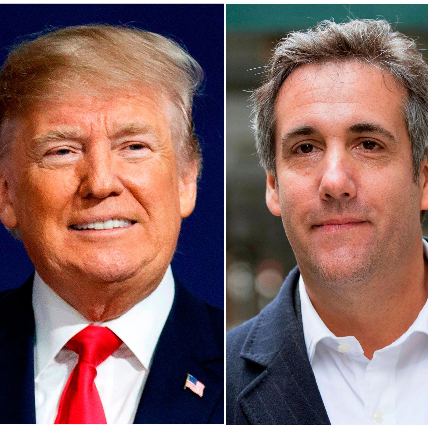 Did President Donald Trump's former lawyer Michael Cohen disclose every crime he knows about?