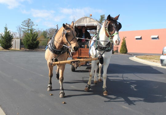 In a wagon pulled by Buck, left, and Renegade, Angela Wood is making her way from Sunset Beach to the state of Washington to raise awareness for child hunger.