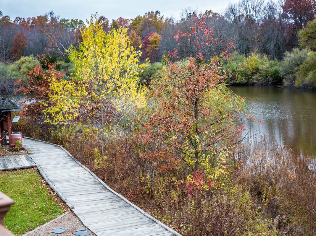 At the Somerset County Environmental Education Center, you and your friends and family can enjoy nature walks and a host of other activities.
