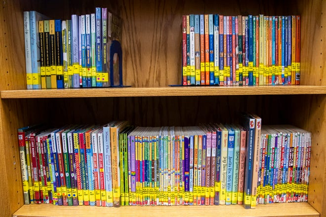 Books are seen in the library on Friday, Nov. 30, 2018, at Kirkwood Elementary in Coralville.