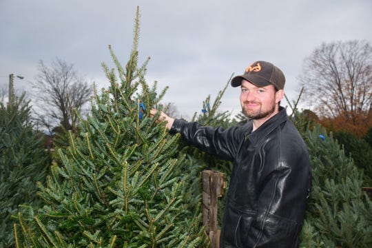 "Richard Lay looks over one of 100 trees at the Scouts BSA Troop 50 Christmas Tree lot at Beaver Ridge United Methodist Church. ""These are the best trees we've seen all day, and we've been to at least five different places,"" said Lay."