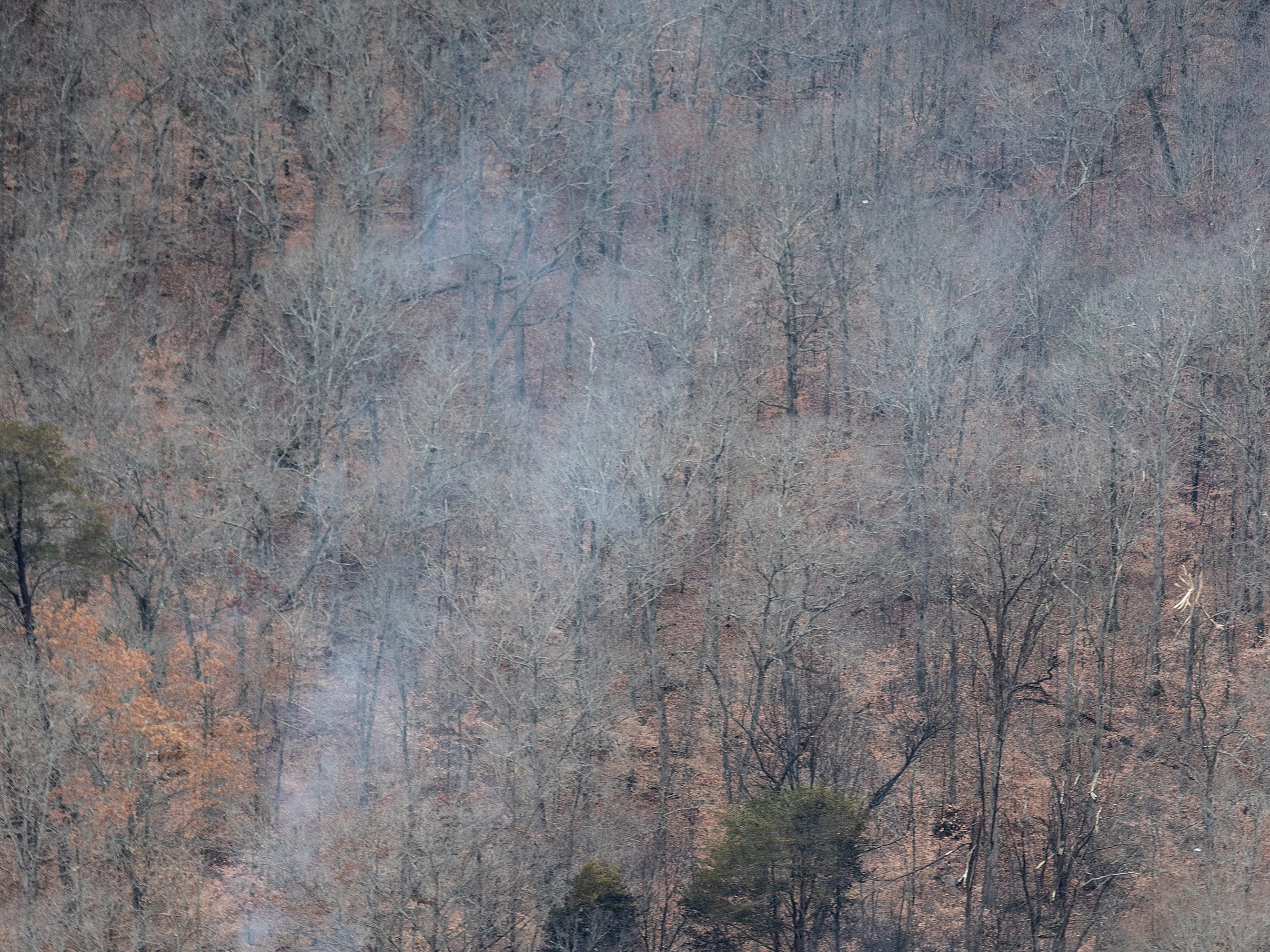 Charred trees and debris on the ground are the only indication of a small plane that crashed in a wooded area near Memphis Indiana following a takeoff from the Clark County Airport. Nov. 30, 2018.