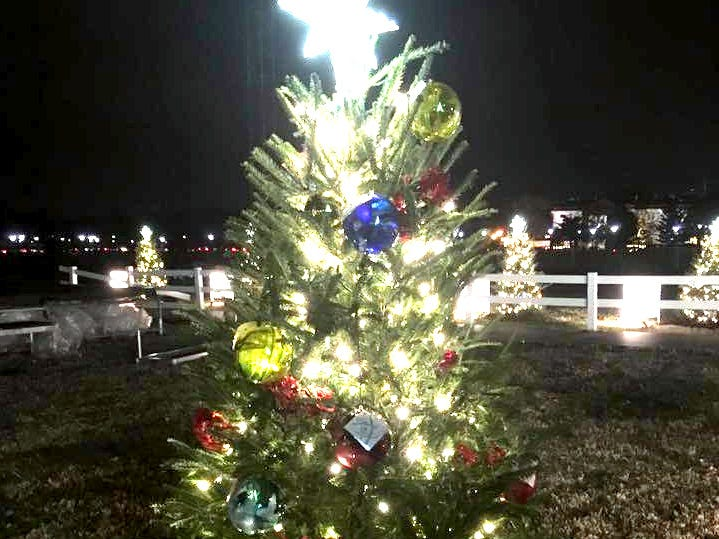 The Tennessee Christmas Tree, decorated with ornaments made by Fairview Middle School art students, on display with the National Christmas Tree in Washington, D.C.