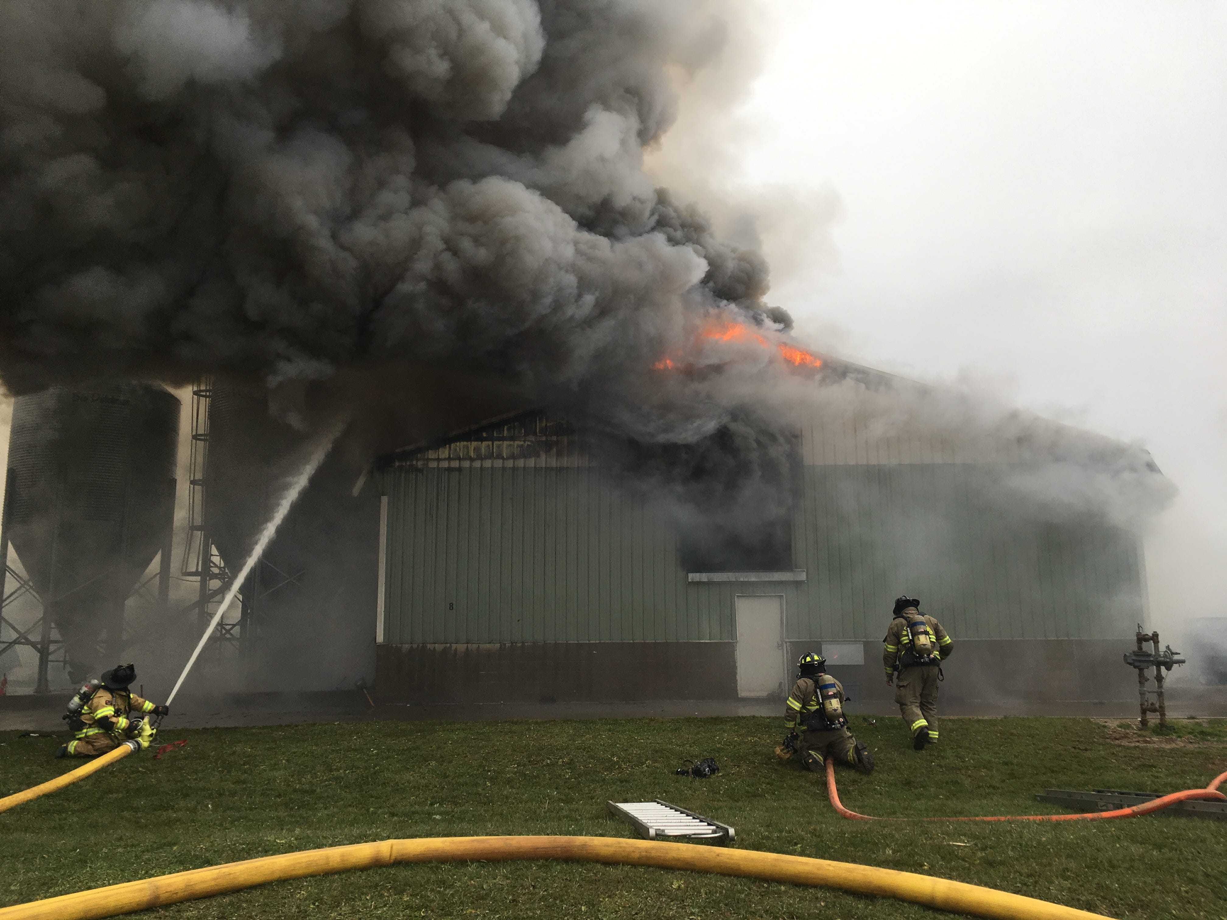 A chicken tries to re-enter the burning barn at Trillium Farms in Croton as firefighters work to contain the blaze on Nov. 30, 2018.