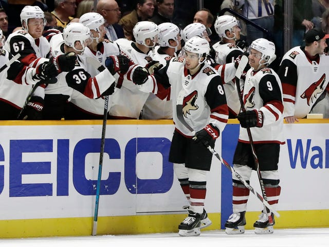 Arizona Coyotes roster projections for 2019-20