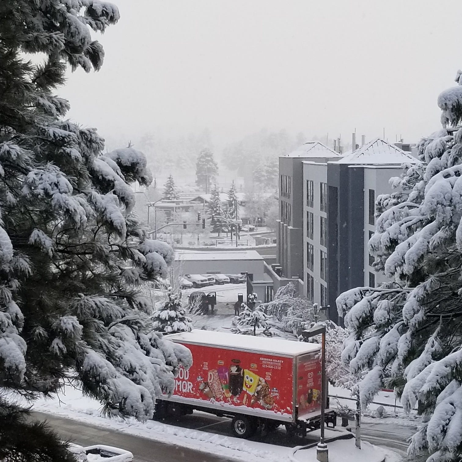 Northern Arizona to see greatest snowfall since 2017 later this week