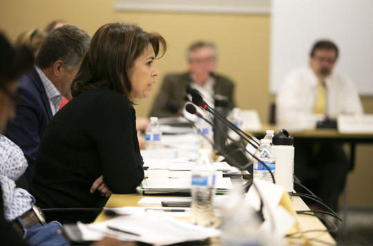 Stefanie Smallhouse of the Arizona Farm Bureau speaks during the Arizona Lower Basin Drought Contingency Plan Steering Committee meeting to work on a drought contingency plan for the Colorado River at Central Arizona Project headquarters in Phoenix on November 29, 2018.