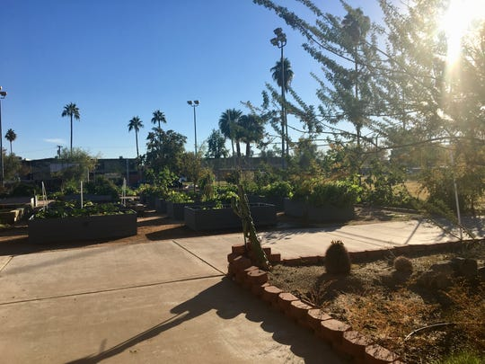 The community garden at Clark Park, where residents can rent raised beds to grow flowers and vegetables.