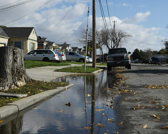 Recent rains have led to many flooded curbs and fallen leaves throughout Salinas.