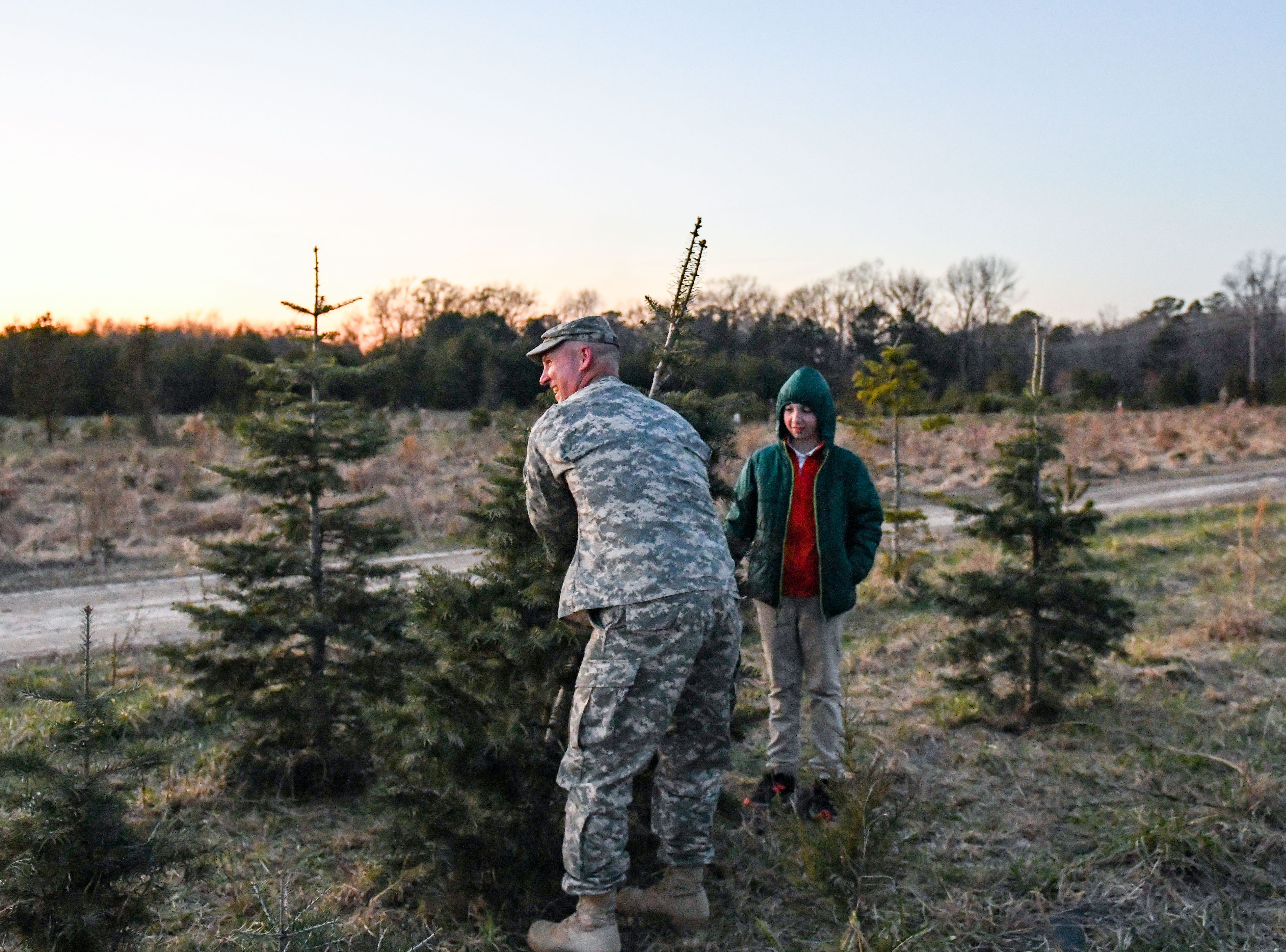 Tom Nichols cuts down a Christmas tree with son Brody Nichols at Nichols Tree Farm in Hebron on Thursday, Nov 30, 2018.