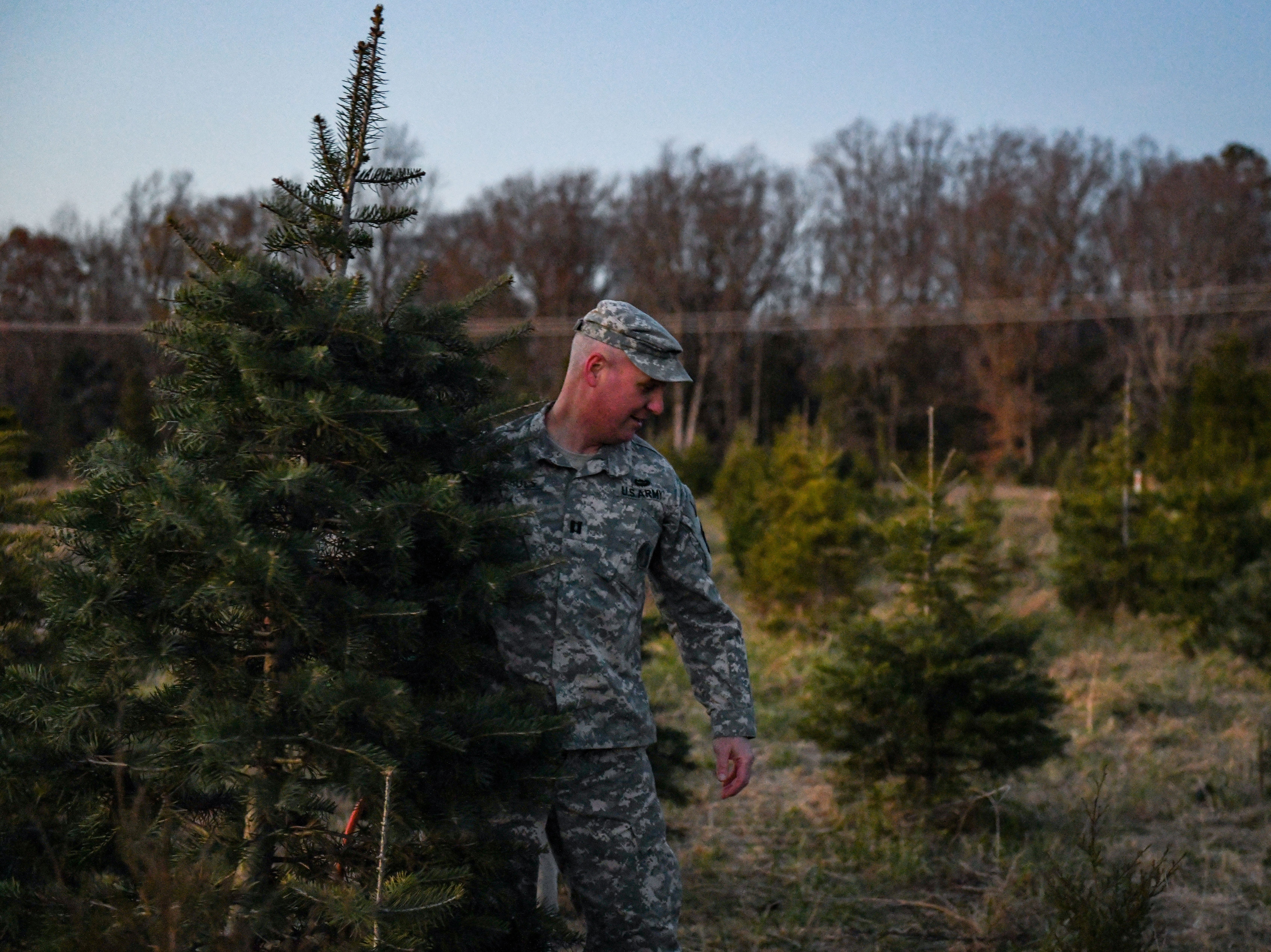 Tom Nichols carries a Christmas tree back to the car at Nichols Tree Farm in Hebron on Thursday, Nov 30, 2018.
