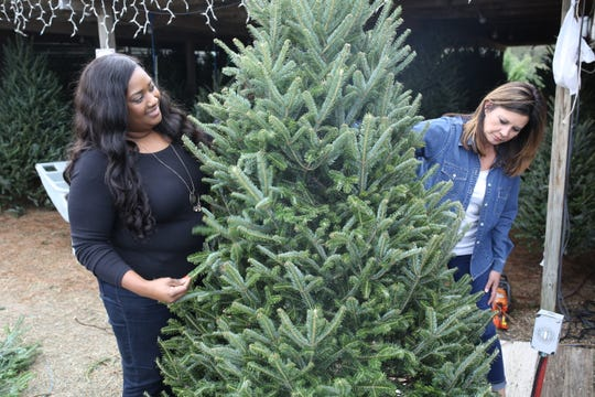 Veneka Brown, left, and Ann Marie Presnell survey their Christmas tree, bound for their home in Quincy.
