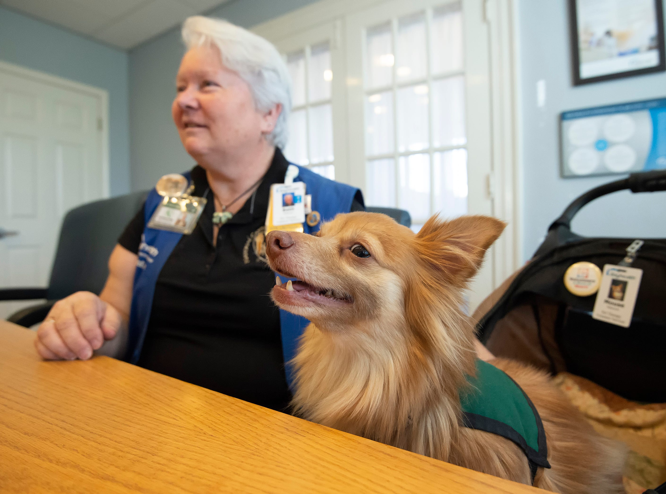 Beth Peterson and her dog, Mouse, who is a trained pet therapy dog, help to brighten the spirits of patients at Bayhealth Kent General Hospital in Dover.