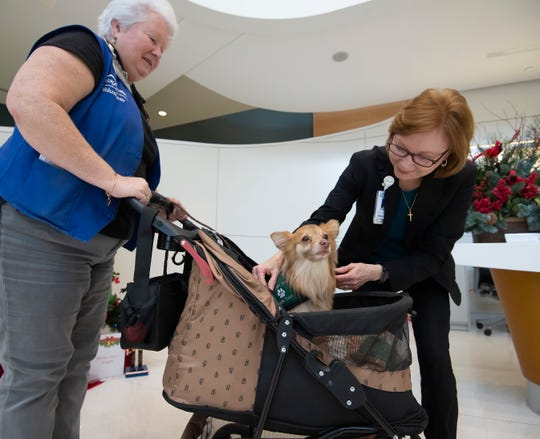 Susan Barnes, right, meets with Beth Peterson and her dog, Mouse, who is a trained pet therapy dog, while meeting with patients at Bayhealth Kent General Hospital in Dover.