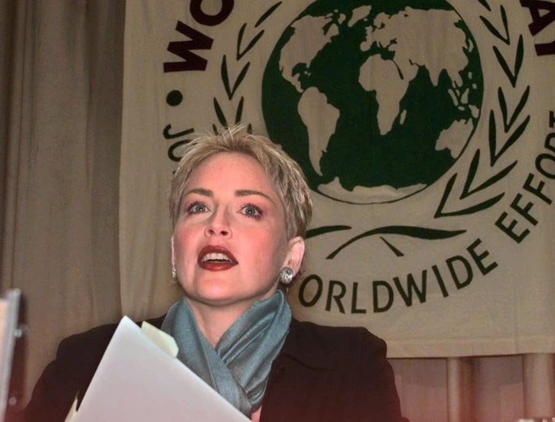 Actress Sharon Stone, chairman of AmFAR's Campaign for AIDS Research, begins her address to the World AIDS Day conference at the United Nations, Dec. 1, 1998.