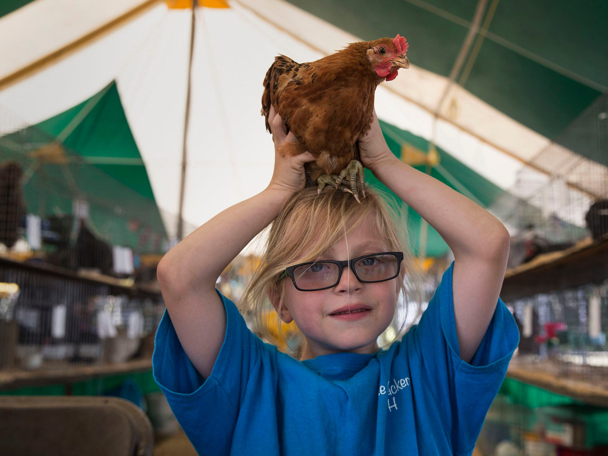 Joey Wilczek, 7, of Forked River, sits with Vito, a rooster, on his head. The Ocean County Fair continues through the weekend on the grounds of Robert J. Miller Air Park. 