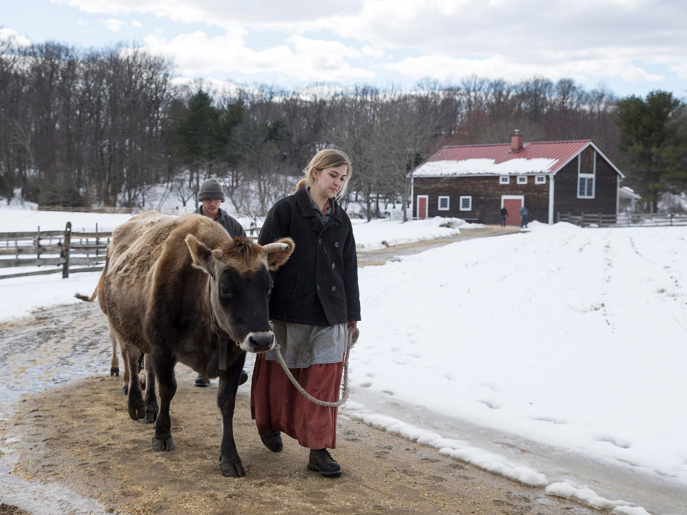Cassandra Abbud , an employee of Longstreet Farm, walks with Lillie up a path on the farm. Partially hidden behind them are Hazel the cow and Stephen Tanay.  Snow melts away quickly as the temperature warms in the mid afternoon sunlight at Historic Longstreet Farm.  Holmdel, NJ on Friday, March 23, 2018