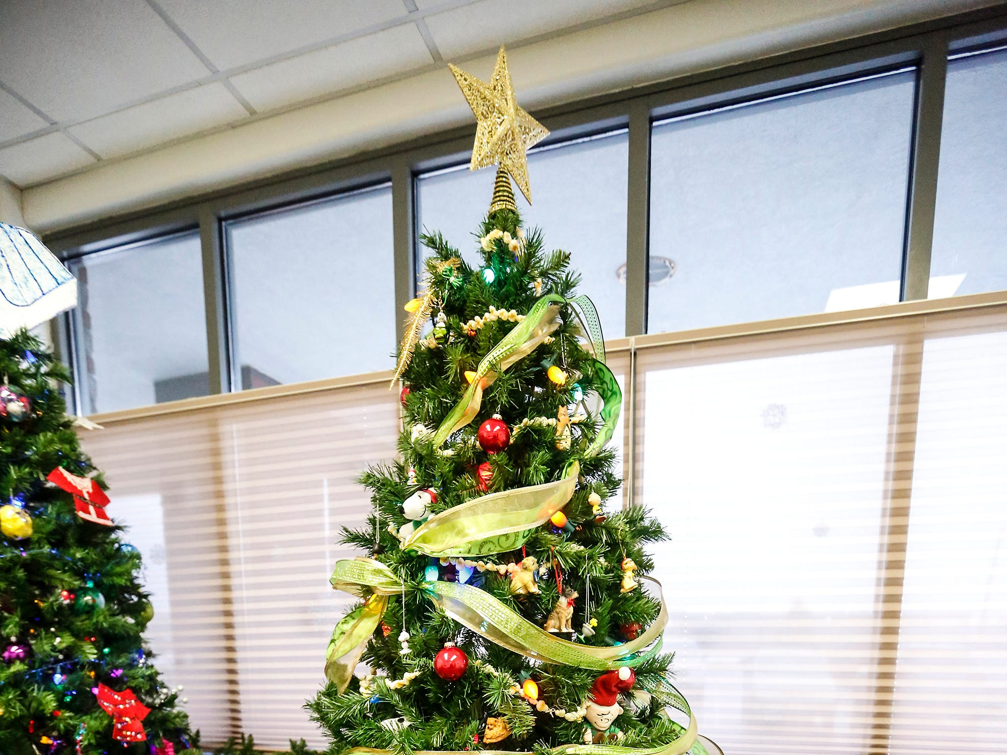 A Christmas tree decorated by Fond du Lac Humane Society on display Nov. 30 at Thrivent Financial, 443 N. Pioneer Road in Fond du Lac. A total of five trees made by local nonprofits are on display and can be voted on with proceeds going to the organizations.