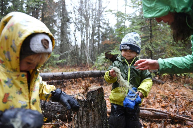 In this Wednesday, Oct. 31, 2018 photo, students play with witch's hair lichen during a hike at Foxtail Förskola at Earthstar Farms in Whitefish, Mont. Foxtail Förskola is a Scandinavian-inspired forest school where nature is the classroom. Children ages 3-6 spend nearly all of the school day outdoors learning social and emotional readiness through free play and nature-based activities on a 35-acre organic farm. (Casey Kreider/The Daily Inter Lake via AP)