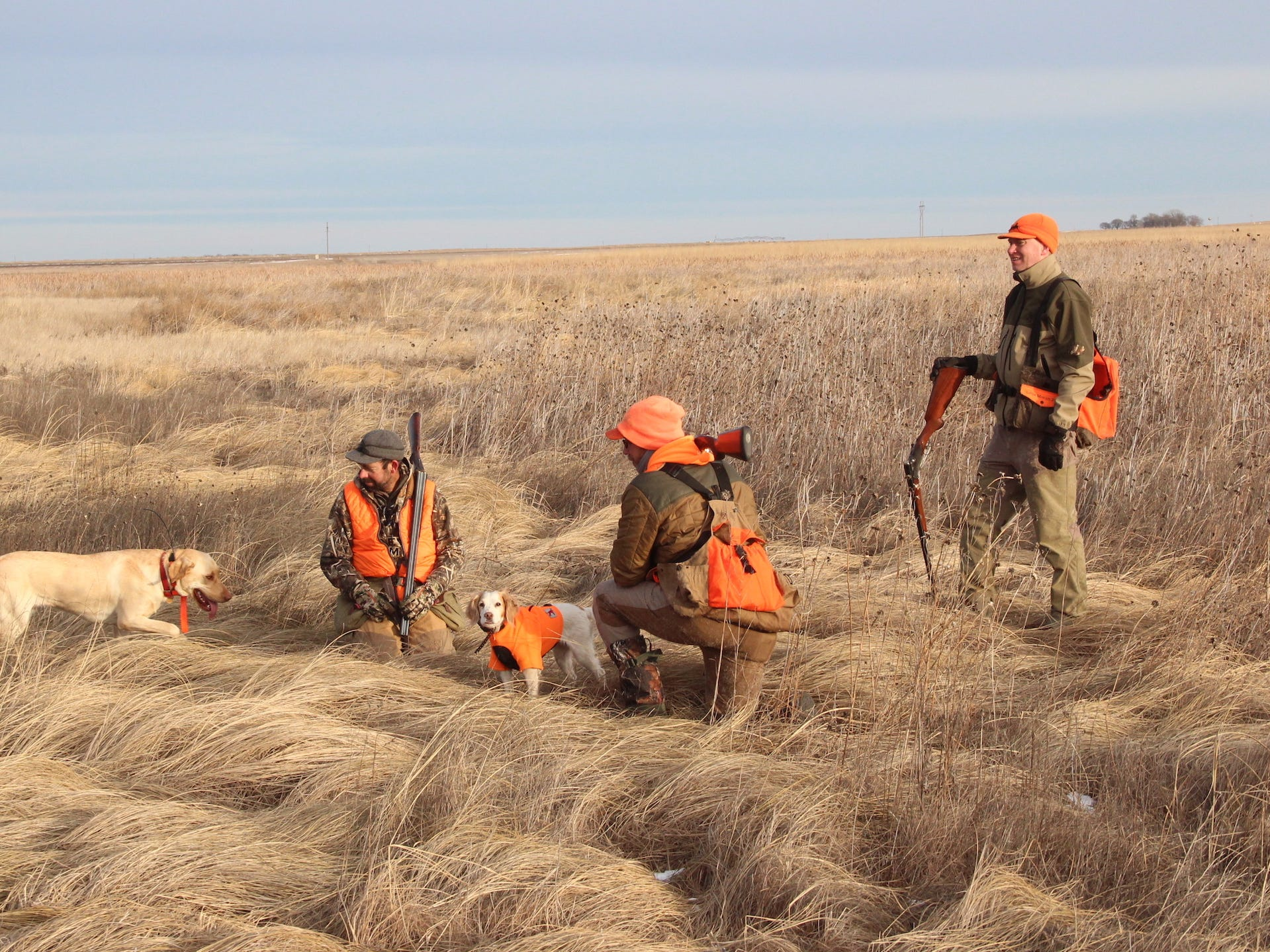 Hunters come to South Dakota from across the nation and many foreign countries to experience what is widely considered the best pheasant hunting in the world.
