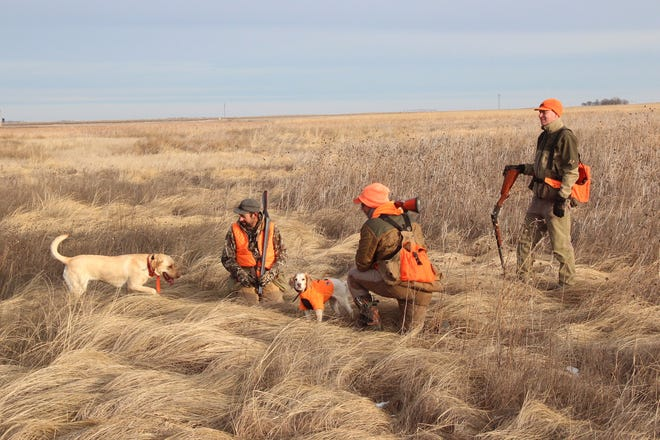 Pheasant hunters pause during an outing on a parcel of land near Aberdeen, South Dakota enrolled in the Conservation Reserve Program. The federal program pays farmers to remove environmentally-sensitive acres from production and instead plant grasses and other species on the land, thereby providing benefits for water quality and improving wildlife habitat.