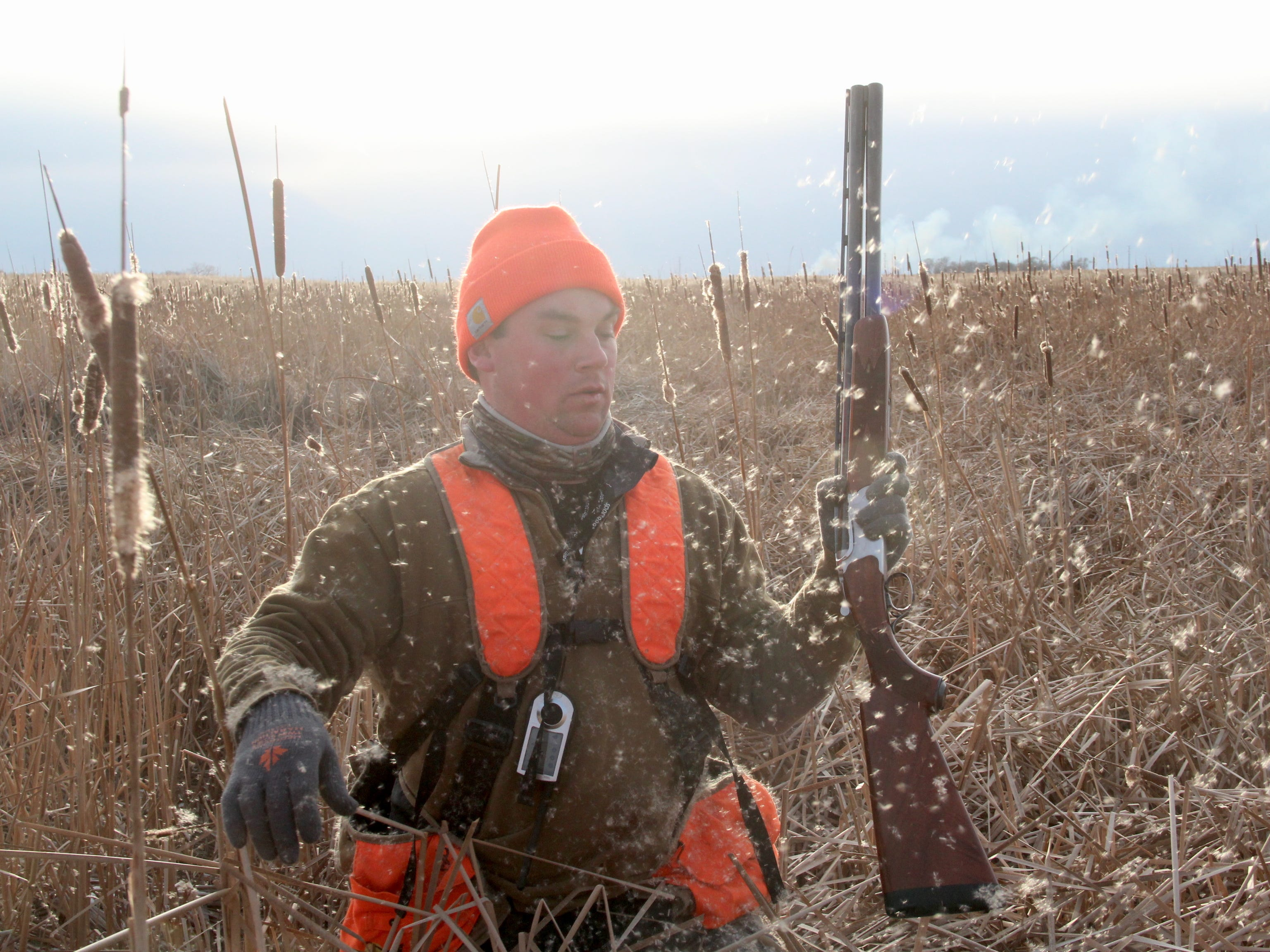Cattail seeds float through the air as Jared Wiklund, a public relations specialist with Pheasants Forever, pushes through a slough on a pheasant hunt near Aberdeen, South Dakota.