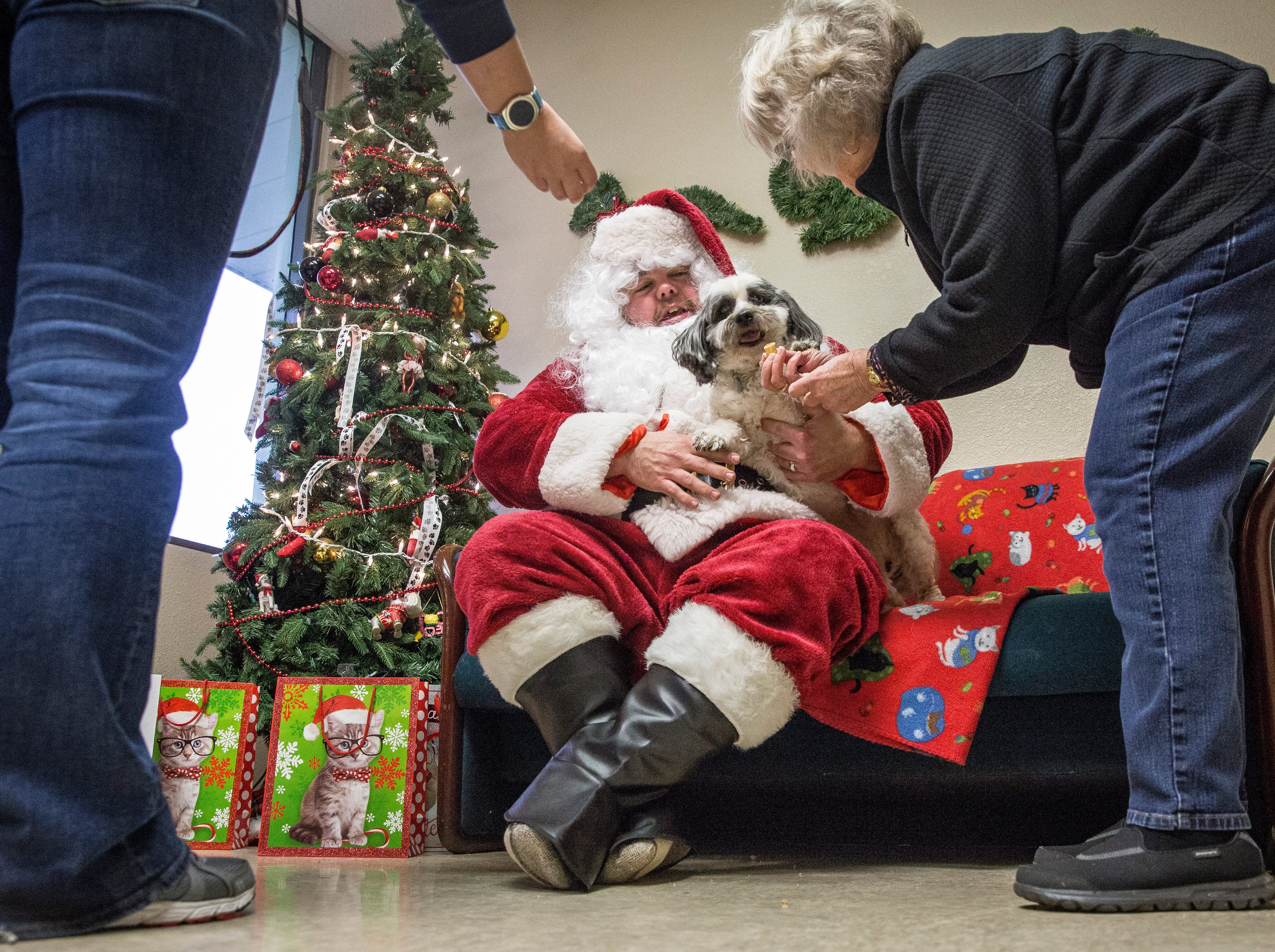 Pets pose for a photo with Santa Claus Saturday afternoon at the Muncie Animal Shelter for a fundraiser put on by the shelter.