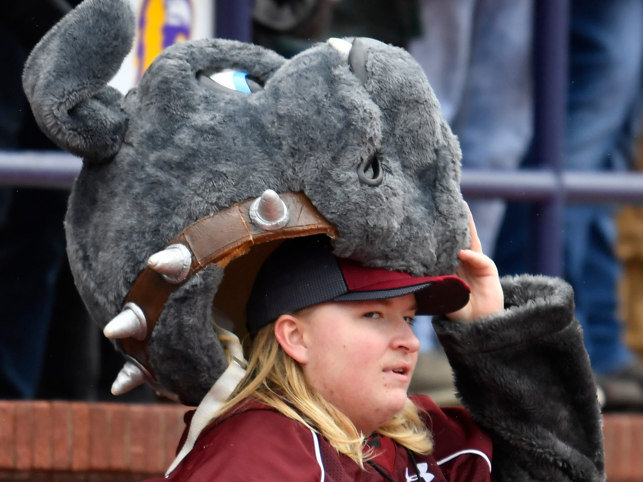 Cornersville's mascot watches the game at the Class I-A BlueCross Bowl state championship at Tennessee Tech's Tucker Stadium in Cookeville, Tenn., on Saturday, Dec. 1, 2018.