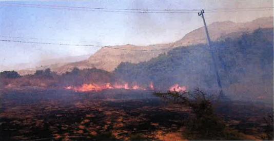 2017 Roadrunner Fire
