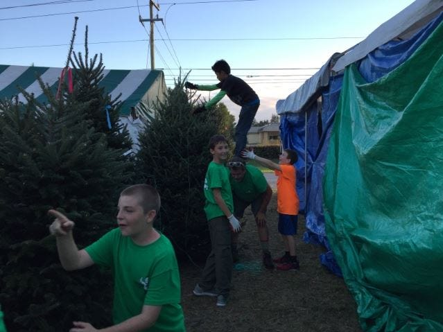Scouts from Boy Scout Troop 119, at the troop's 2017 tree sale. A tree shortage cancelled this year's sale.
