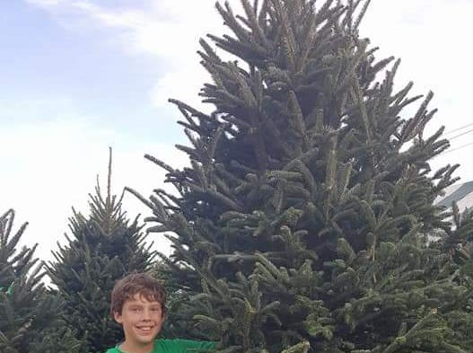 Jack Boldrin, a member of Boy Scout Troop 119, at the troop's 2017 tree sale. A tree shortage cancelled this year's sale.
