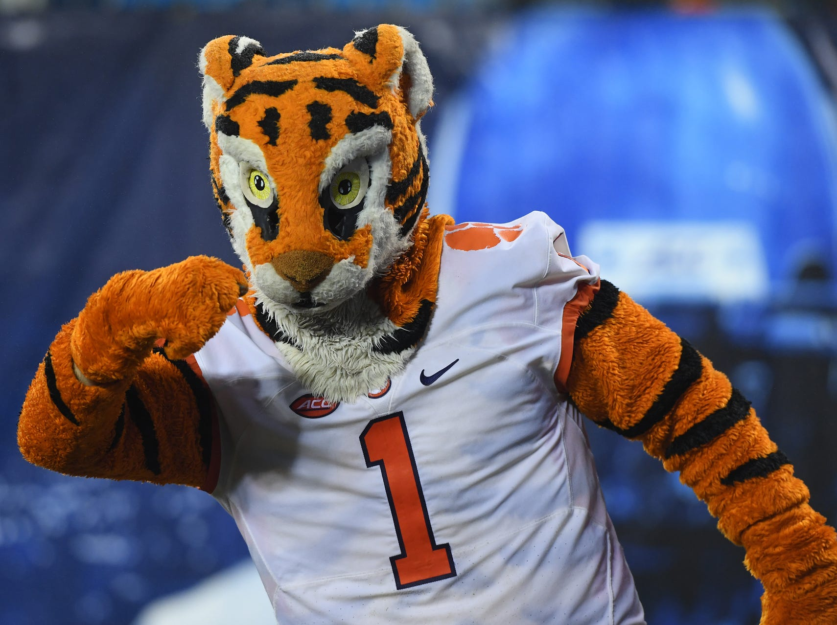 The Clemson Tiger during the 3rd quarter of the Dr. Pepper ACC Championship at Bank of America Stadium in Charlotte, N.C. Saturday, December 1, 2018.